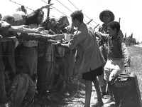 On Israel's little-known concentration and labor camps in 1948-1955